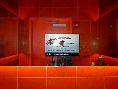 jodi sh doff  : onlythejodi : apples oranges : ING Direct bathroom